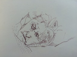 Mam Sepia Pen Sketch Sleeping