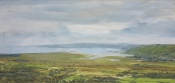 Above Kidwelly by Ian Price