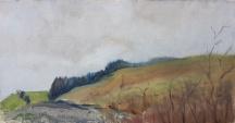 Mist Pine Fold by Ian Price