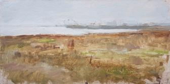 Raining Salt Marsh